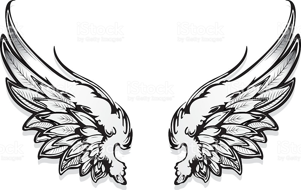 1024x649 Wings Clipart Drawn