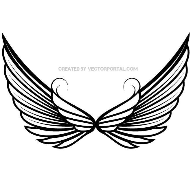 660x660 Wings Vector Drawing