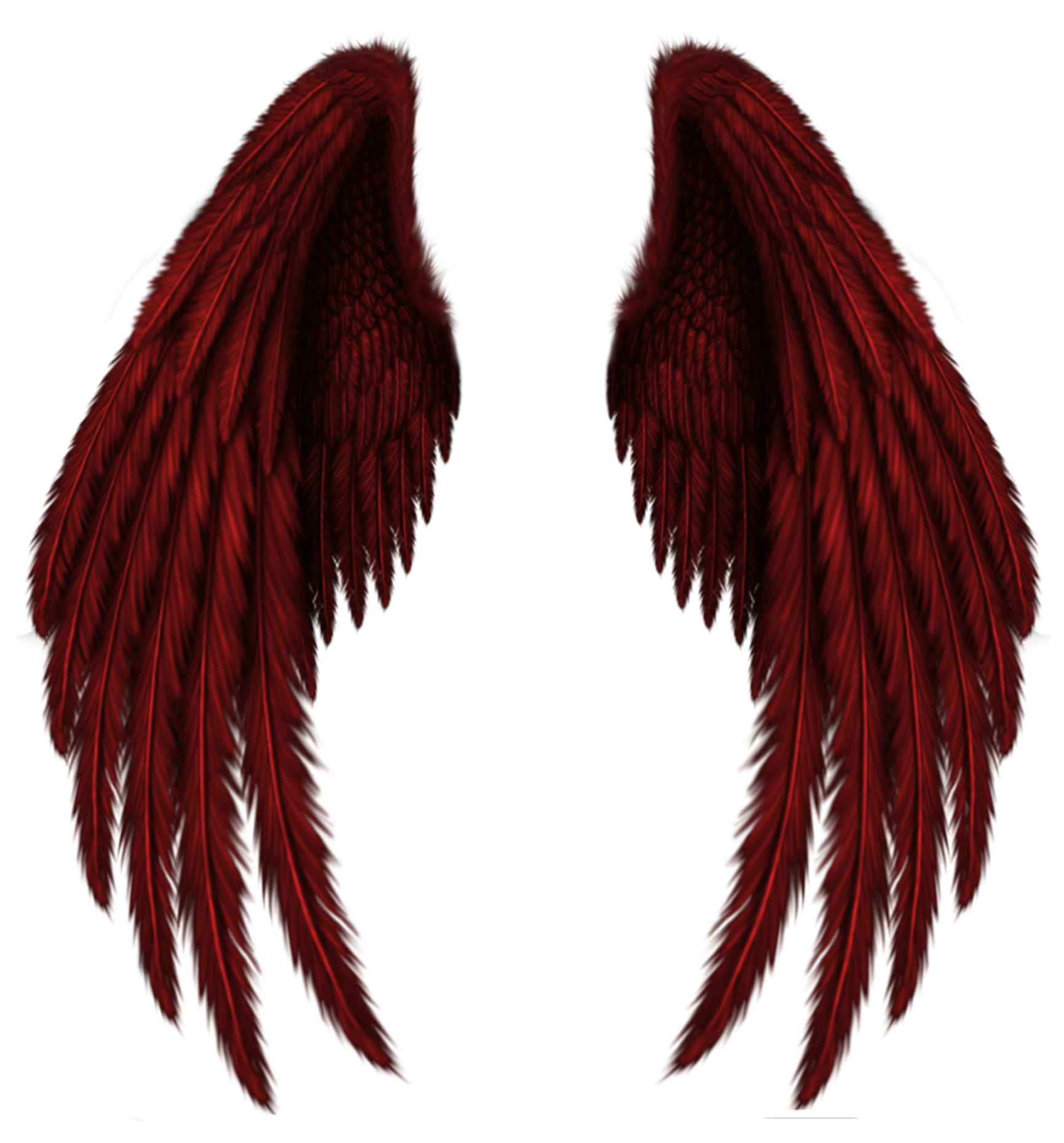 1731x1859 Transparent Red Wings Png Clipart Pictureu200b Gallery Yopriceville