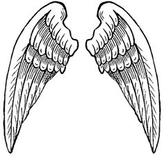 236x223 Wings Clipart Outline