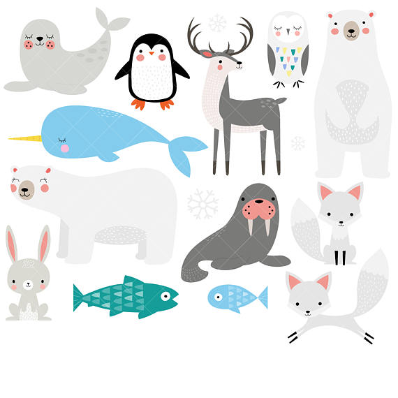 570x570 Arctic Animals Clipart Winter Animals Clip Art Polar Bear