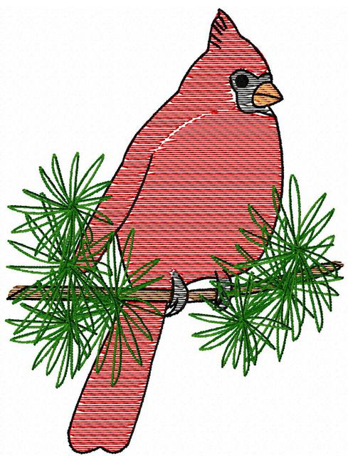 489x640 Cardinal On Branch Sketch Embroidery Design