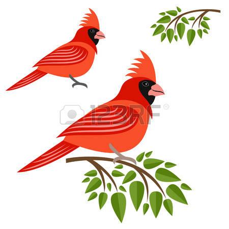 450x450 Cardinals clipart free
