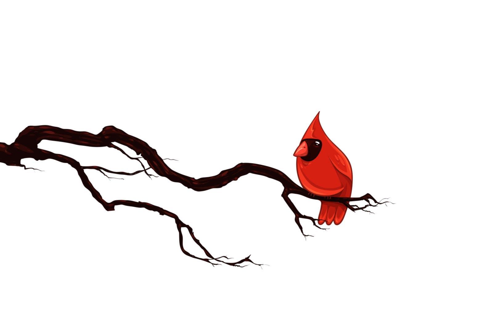 1600x1066 Winter Cardinal Clipart