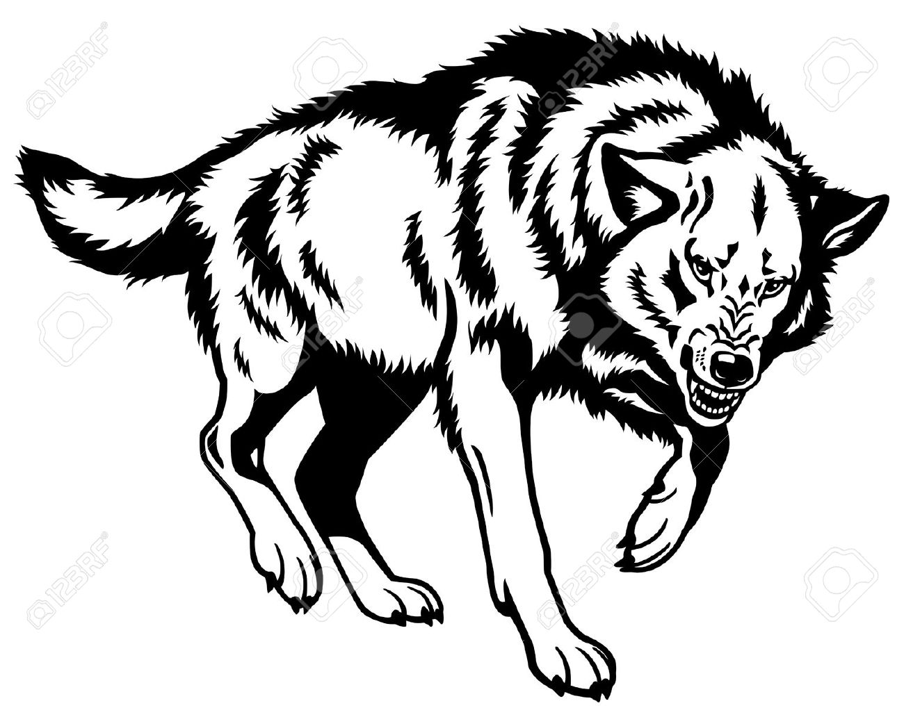 1300x1032 Gray Wolf Clip Art
