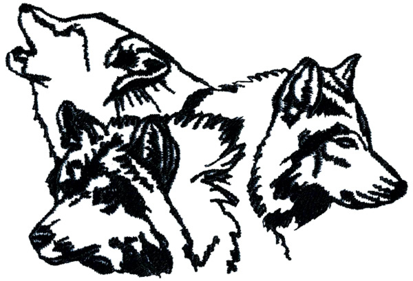 600x409 White Wolf clipart wolf pack