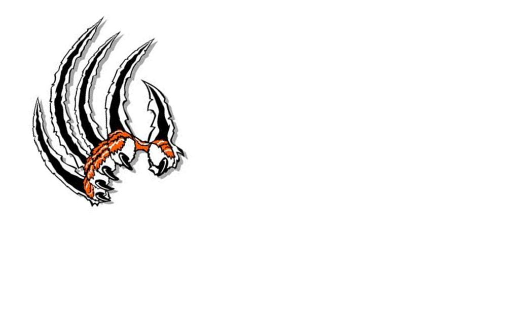 1008x630 Image Of Claw Marks Clipart