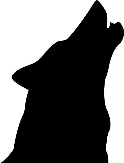 485x640 The Best Wolf Silhouette Ideas Wolf Artwork