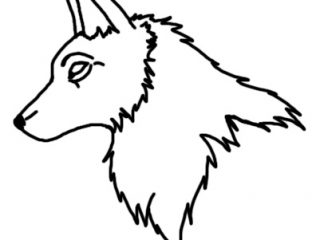 320x240 Wolf Face Outline Outline Of Wolf Face Clipart Library Clip Art
