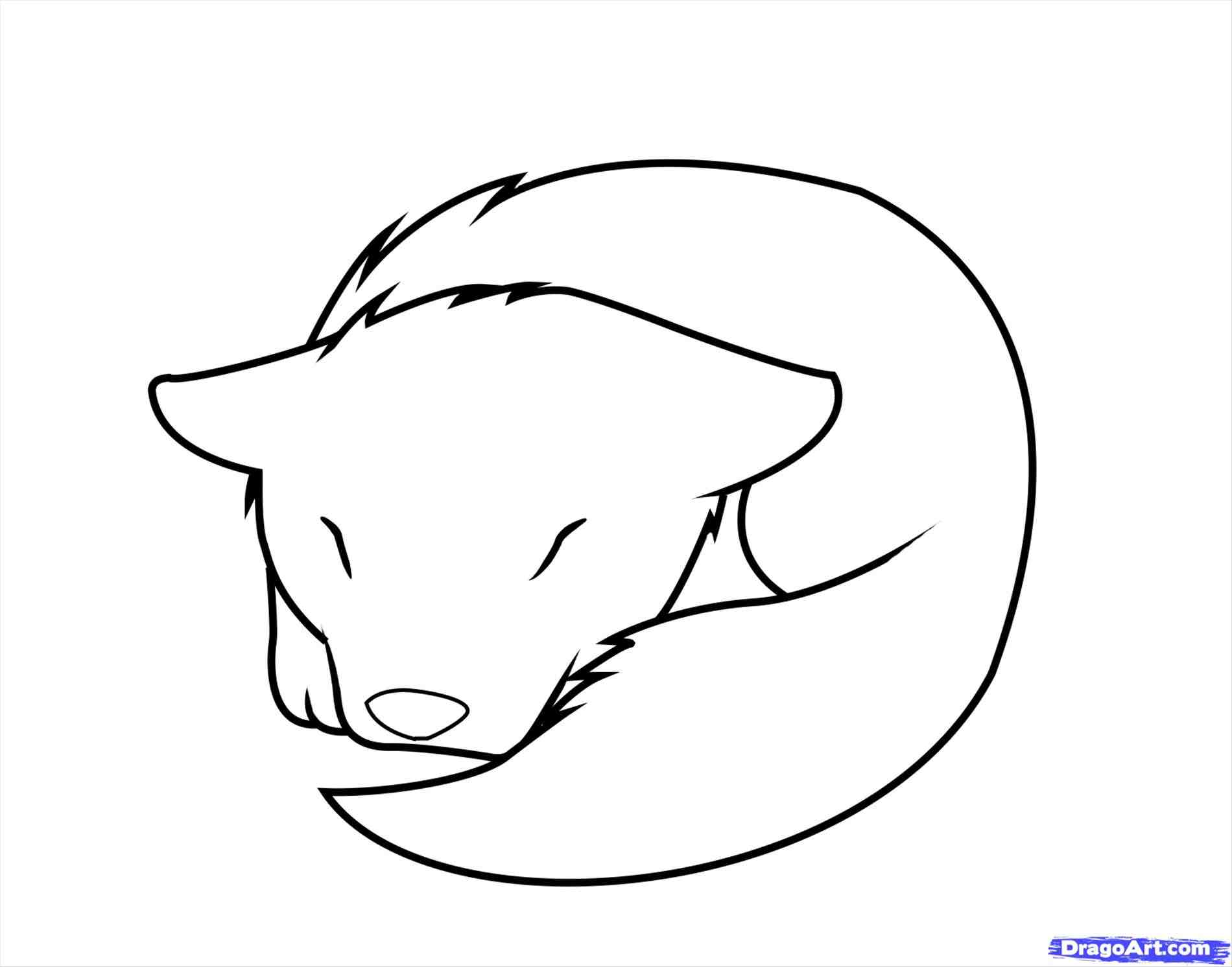 1900x1492 How To Draw A Wolf Head Easy