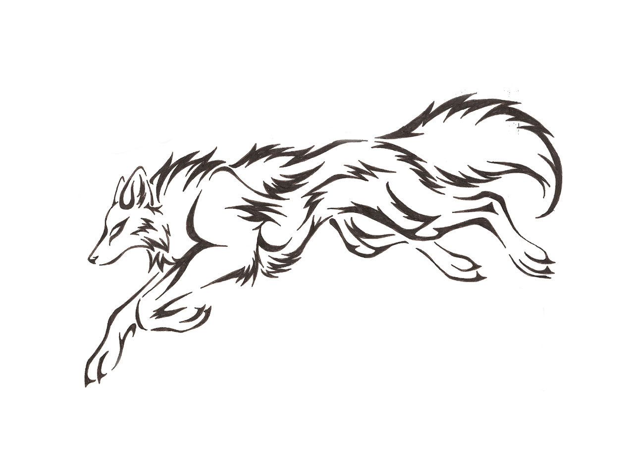 1280x960 Outline Drawing Of A Fox Wolf Outline Drawing
