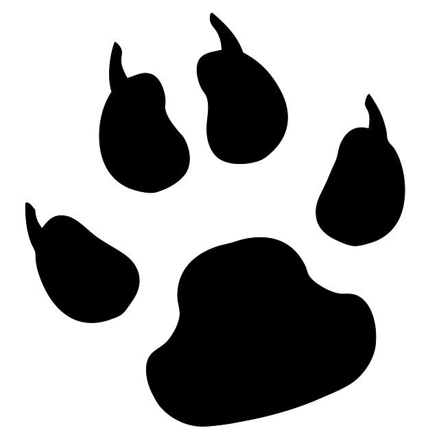 640x640 Panther Paw Print Clip Art