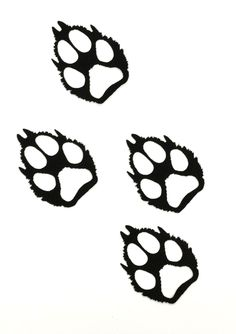 236x334 Wolf Paw Print Stencil White Wolf Paw Prints Vinyl Decals