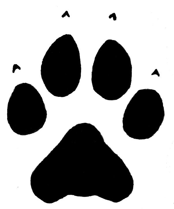 603x725 Wolf Paw Print