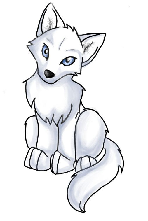 507x758 Best Wolf Drawing Easy Ideas How To Draw Dogs