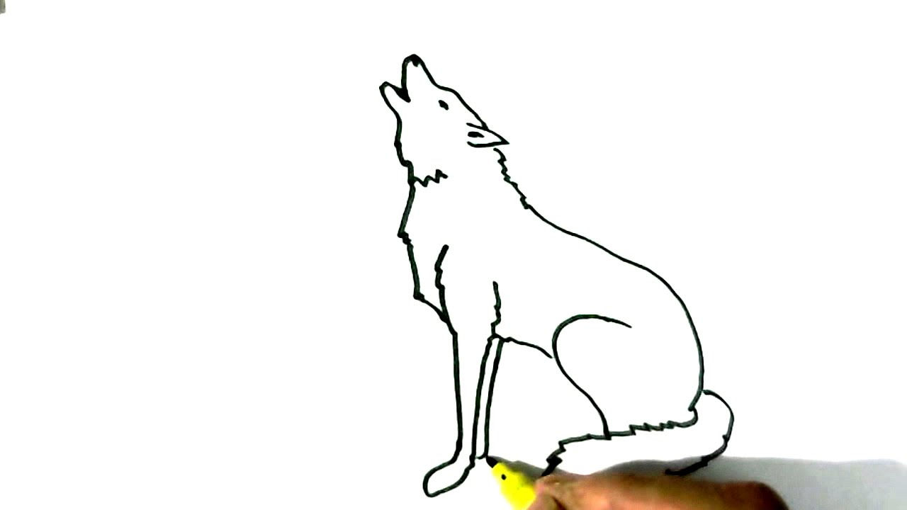 1280x720 Easy Drawings Of Wolves