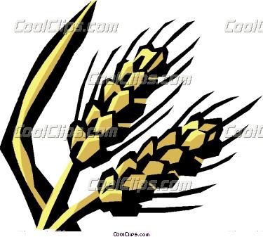 375x337 Grain Clip Art Clipart Panda