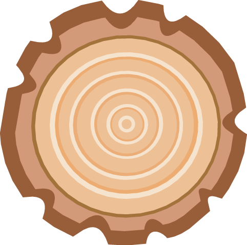 482x478 Timber Clipart Tree Ring