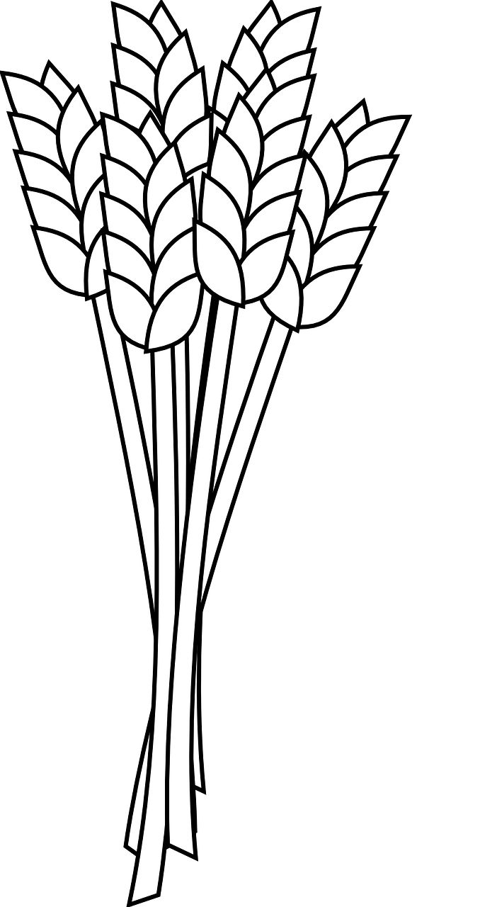 678x1280 7 Best Grain Images Fingers, Flowers And Graphic Art