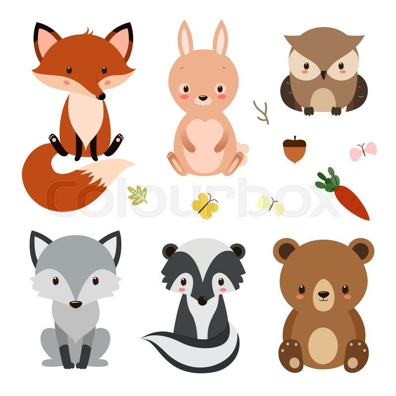 800x800 Set Of Cute Woodland Animals Isolated On White Background. Vector