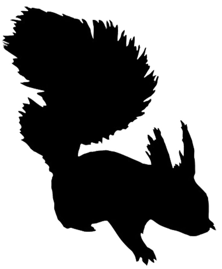 736x893 26 Best Woodland Animal Silhouette Images