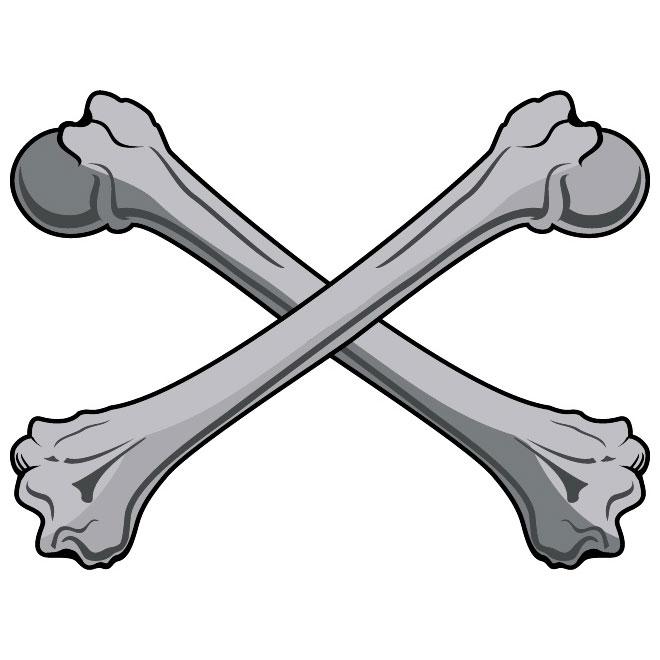 660x660 Bone Clip Art X Cliparts