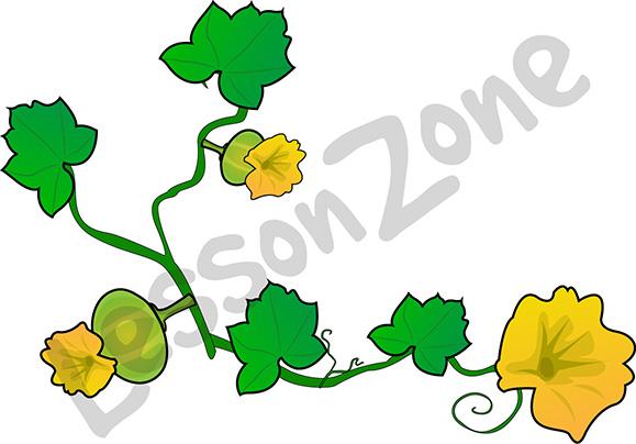 579x404 Yellow Pumpkin Flower Clipart