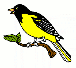 260x232 Colors Bird Clip Art Download