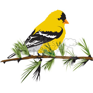 300x300 Royalty Free Yellow Bird 394997 Vector Clip Art Image