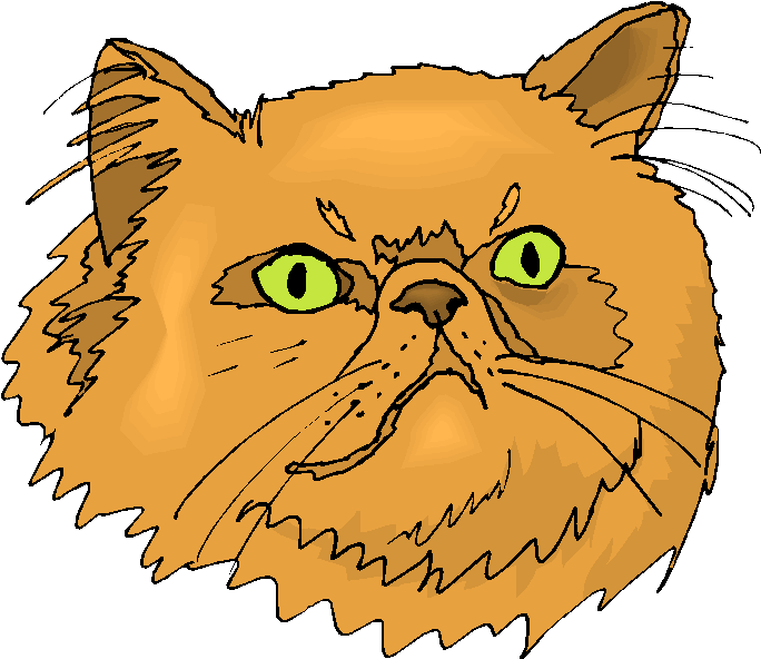 684x592 Persian Cat Clipart Yellow