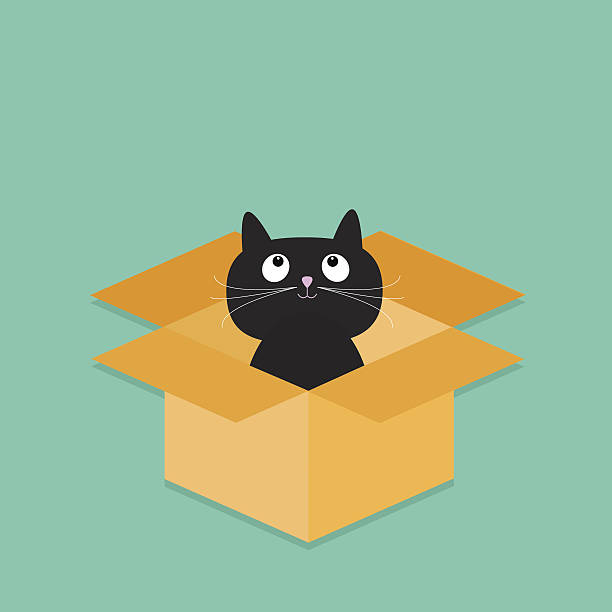 612x612 Cat In Box Clipart Amp Cat In Box Clip Art Images