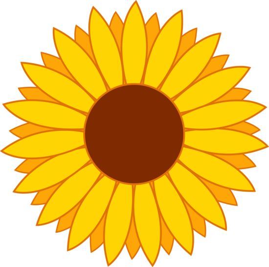 550x545 Daisy Clipart Sunflower Flower