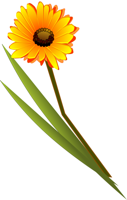 444x699 Flowers Clip Art Download