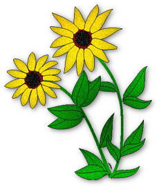 230x271 Golden Daisy Cliparts