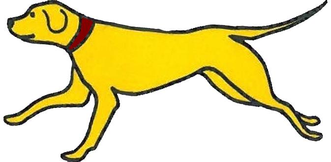 673x330 Graphics For Yellow Dog Graphics