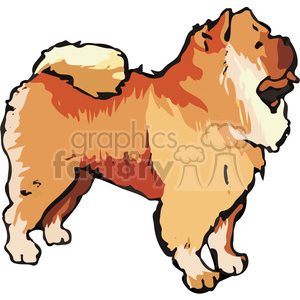 300x300 Royalty Free Chow Chow Dog 131708 Vector Clip Art Image