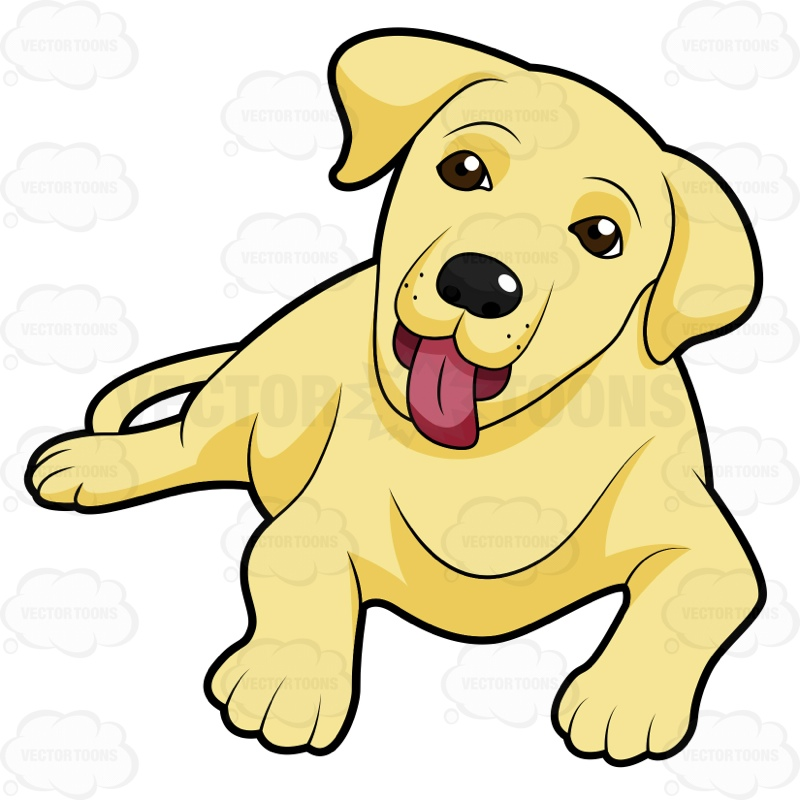800x800 Yellow Lab Dog Clipart