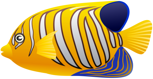500x260 Yellow Fish Png Clip Art