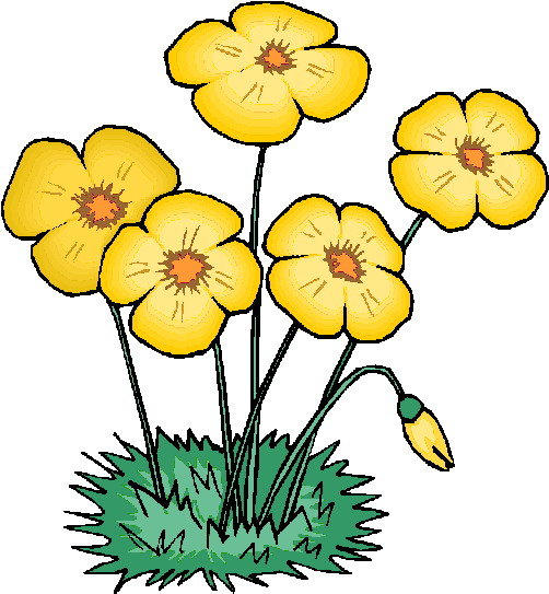 502x543 Yellow Flower Clipart Flowering Plant