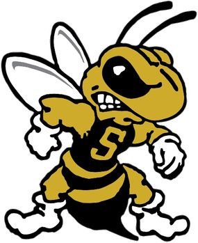 285x349 37 Best Football Yellow Jackets Images Yellow