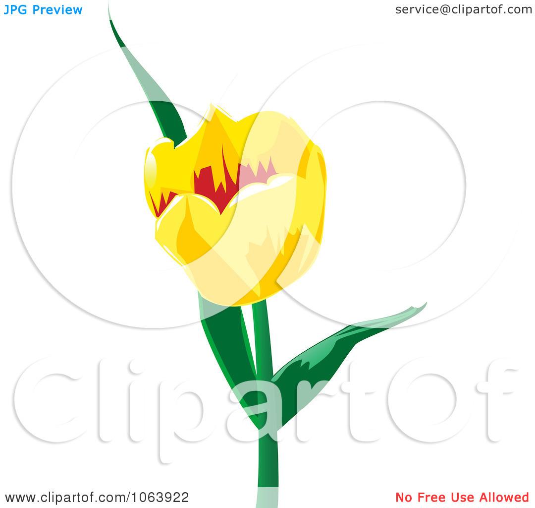 Yellow Tulip Clipart