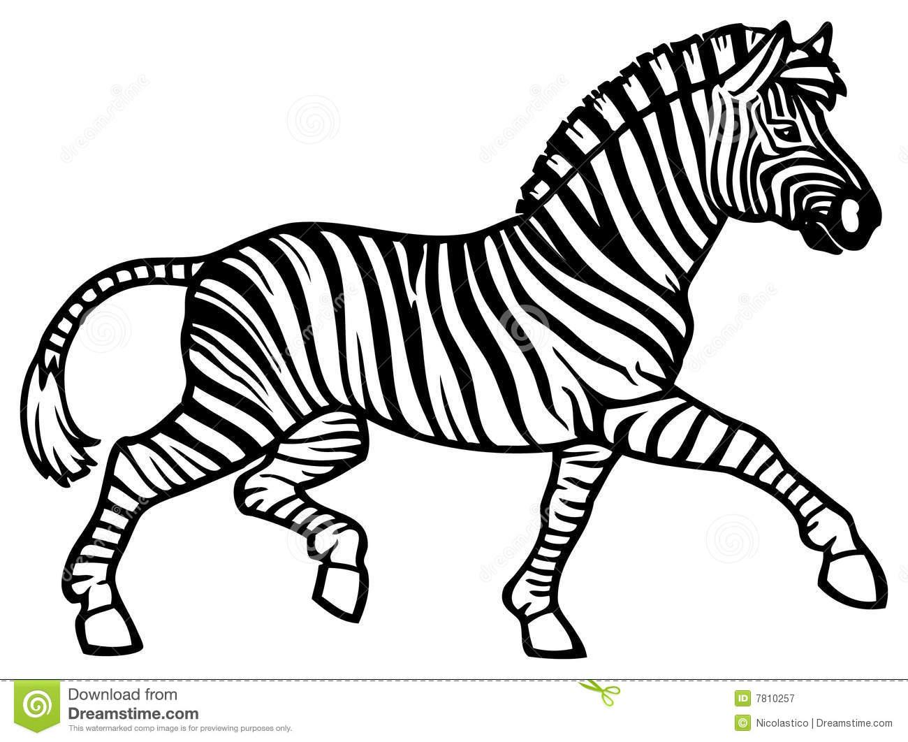 1300x1062 Zebra Clip Art BW – Cliparts