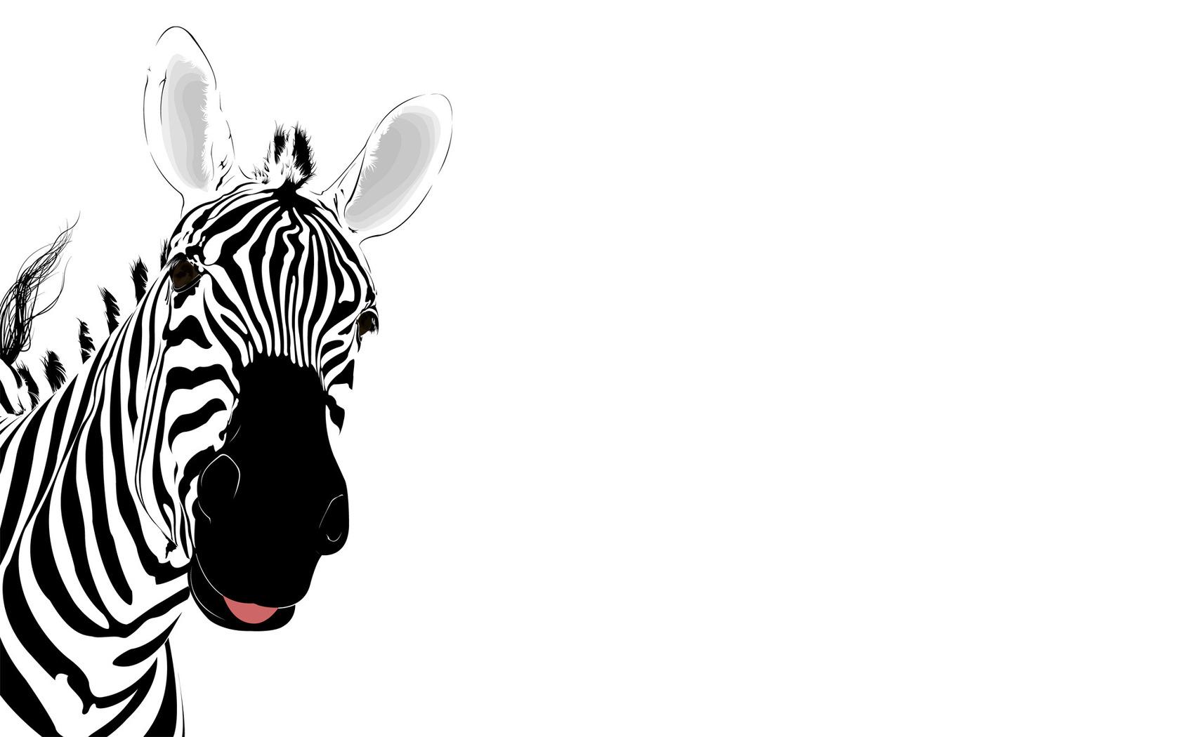 1680x1050 Zebra clipart wallpaper