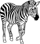 163x180 Zebra Clipart Black And White
