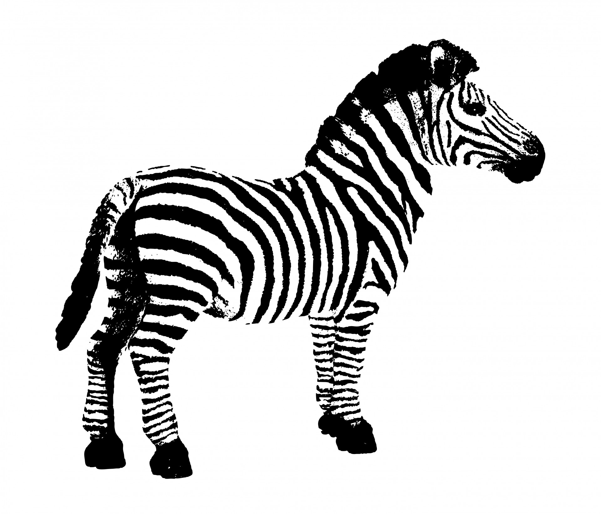 1920x1645 Zebra clipart free stock photo public domain pictures