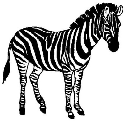 409x390 Baby zebra clipart free to use clip art resource