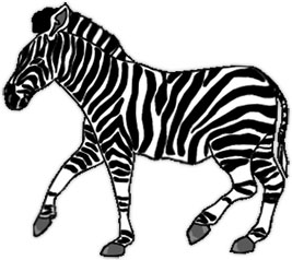 267x238 Zebra Clipart Walking