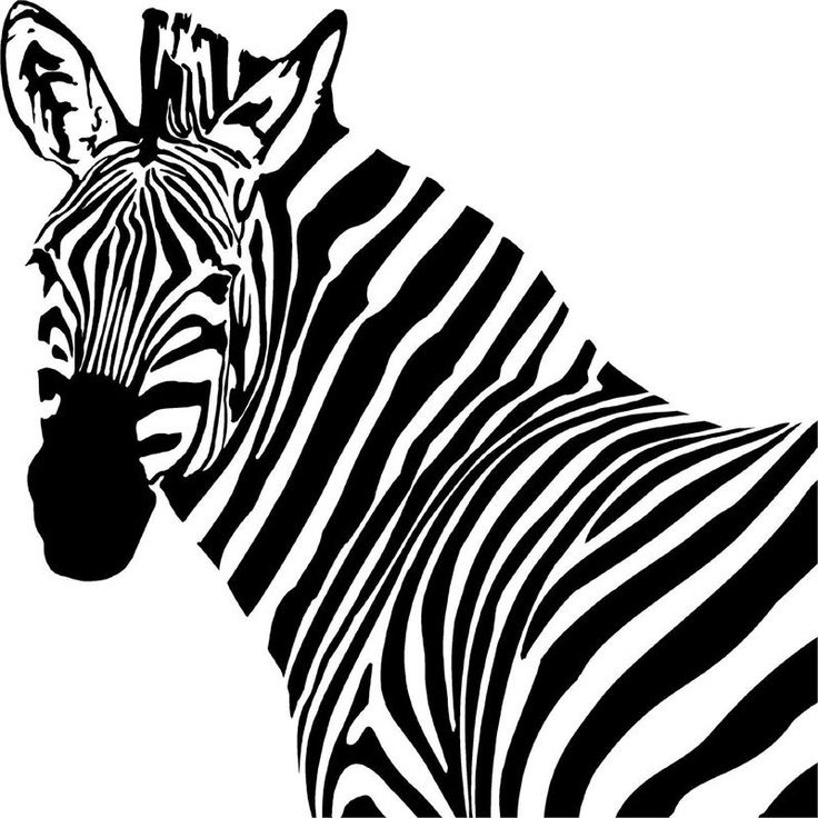 736x736 Zebra Head Colouring Page Murderthestout
