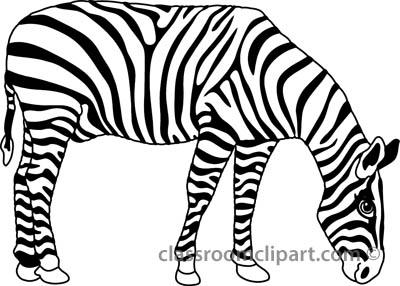 400x286 Zebra clipart big