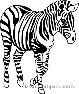 338x400 Black And White Zebra Clipart